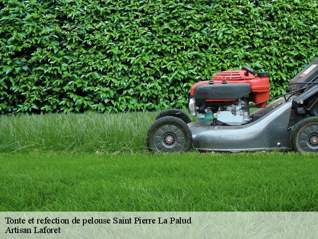 Tonte et refection de pelouse  saint-pierre-la-palud-69210 Artisan Laforet